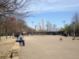Grant Bark Dog Park South Loop