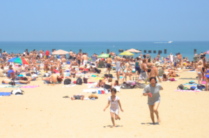 Looking for things to do near Lincoln Park's North Avenue Beach?