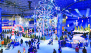 winter wonderfest navy pier streeterville winter festivites near downtown