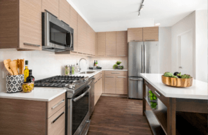 Luxury studio 1 bed apartments for rent near union station 727 w Madison
