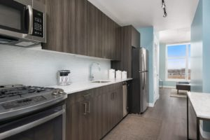 Now leasing! Luxury studio, 1 bed, 2 bed, 3 bed, Penthouse apartments in downtown Chicago!