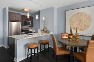 Loop Luxury Apartments for rent..4
