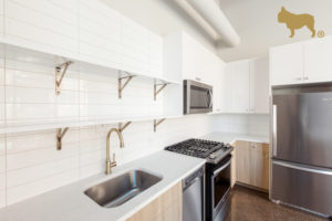 Flat's Life The Ardus Looking for luxury apartments for rent near River North?