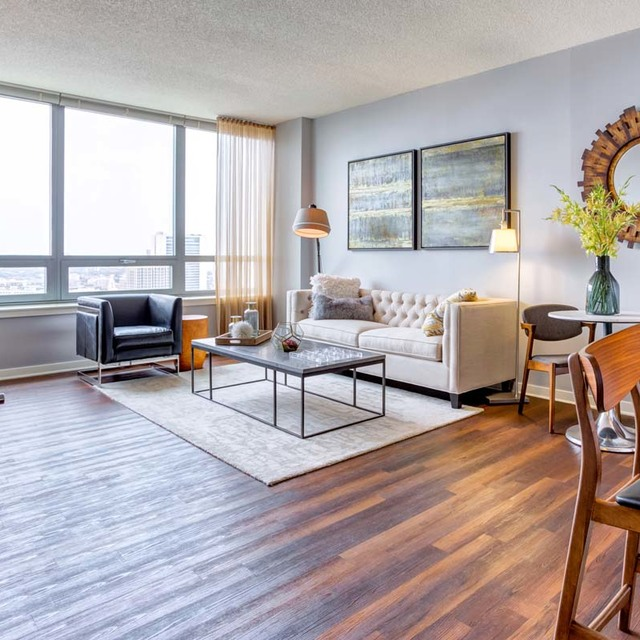 West Loop Apartments: Looking For A Pet Friendly Studio Apartment For Rent Near