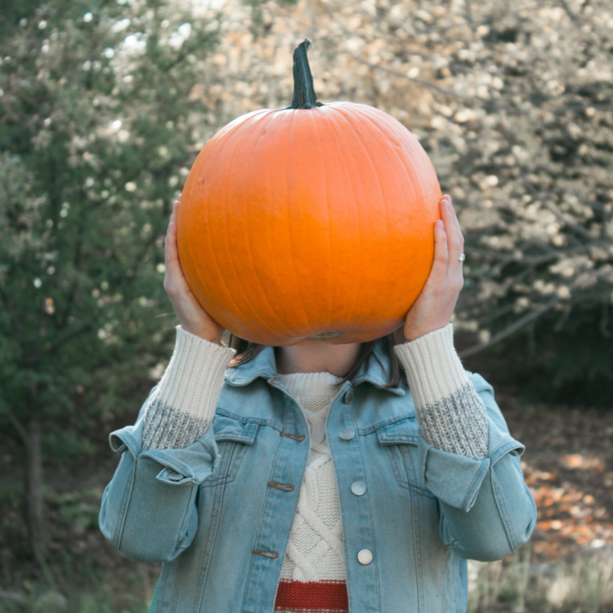 Chicago pumpkin fall activities and things to do this weekend olivia-kulbida