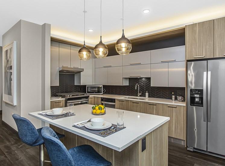 Millennium on Lasalle Chicago Loop Apartments for Rent Pet Friendly